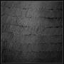 1978, black, cm 50x50, oil on canvas (priv. coll.)