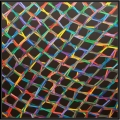 2013, the net (8), cm 150x150, acrylic on canvas
